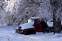 Iced Tree Over Old Farm Truck